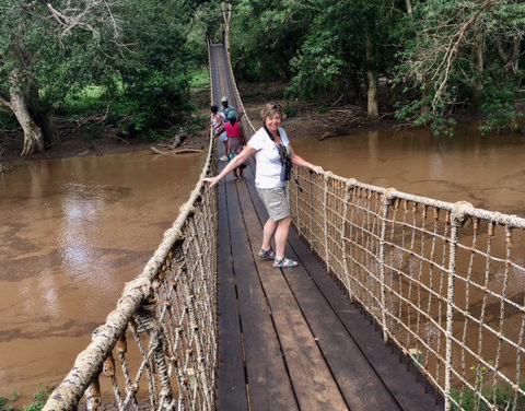 Day 2 – Enchanting Walk through the Fig Forest in Mkuze Game Reserve