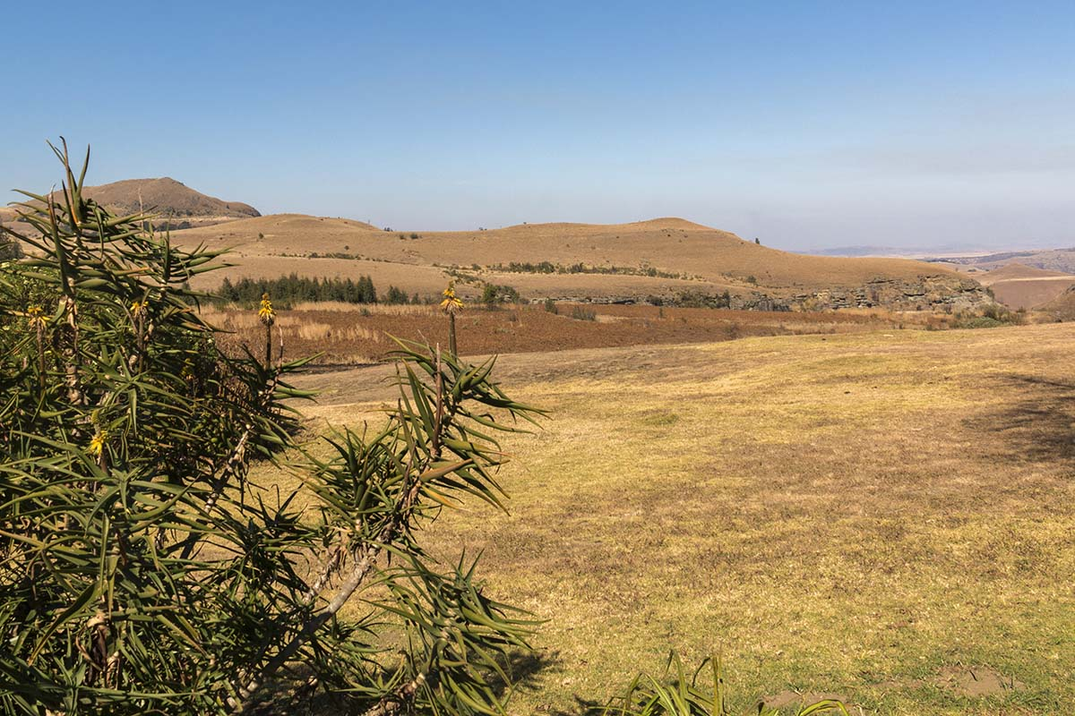 Stunning view from our table overlooking the Drakensberg Mountains