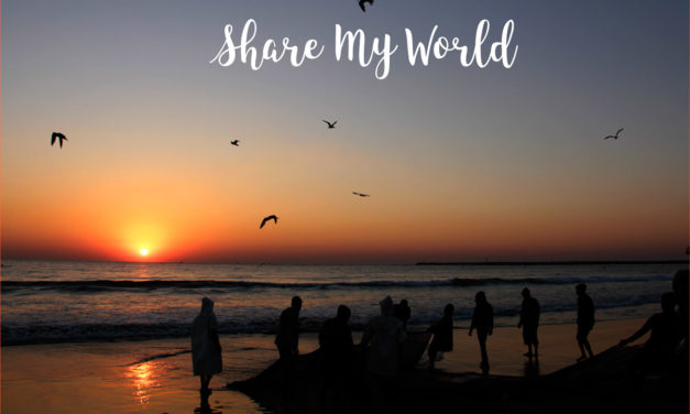 Share My World : 20 November 2017
