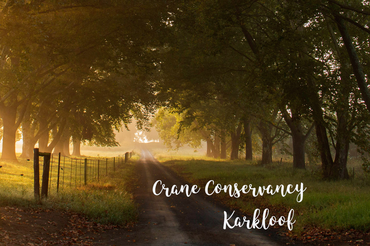 Crane Conservancy, Karkloof