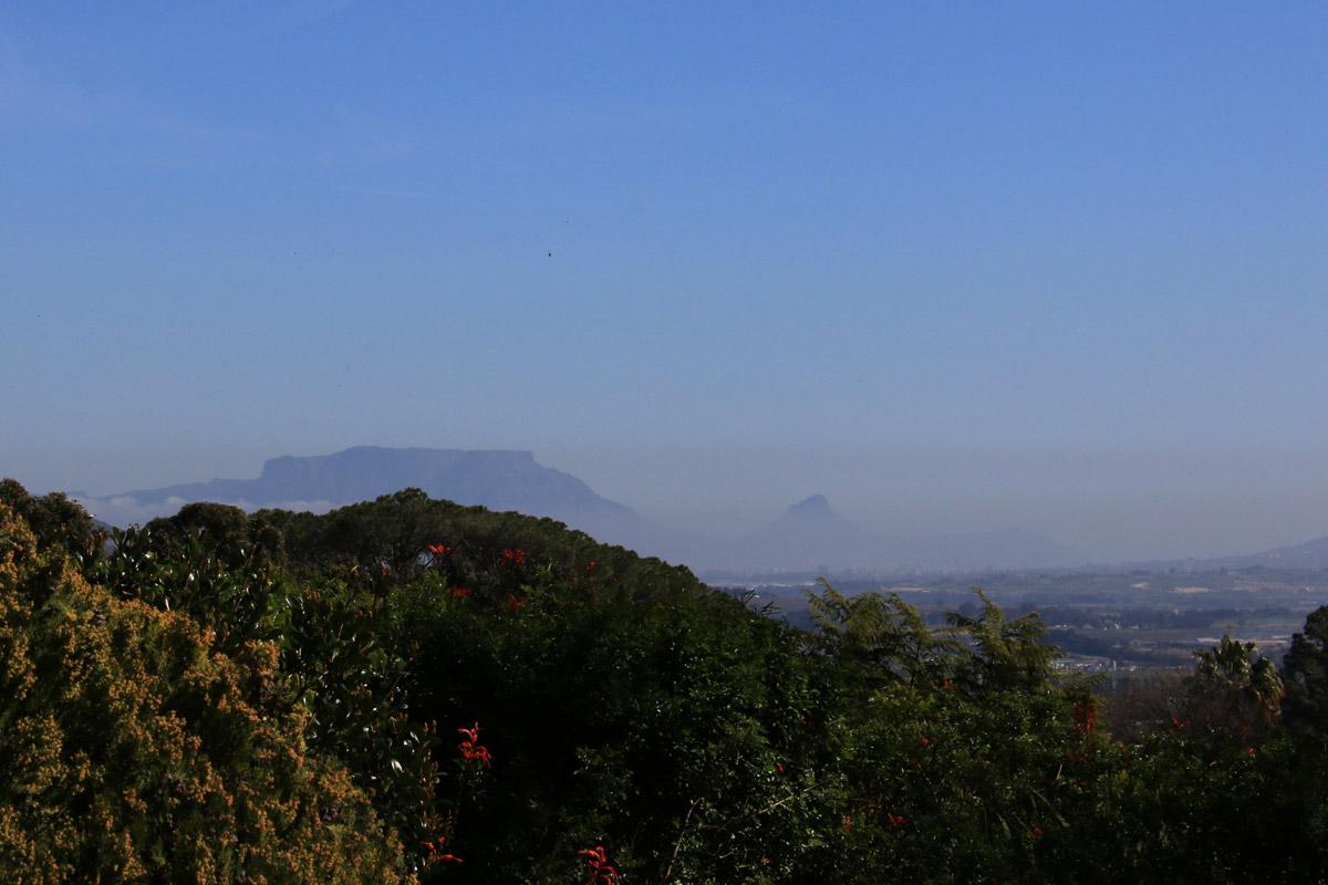 Visiting wine farms, Stellenbosch