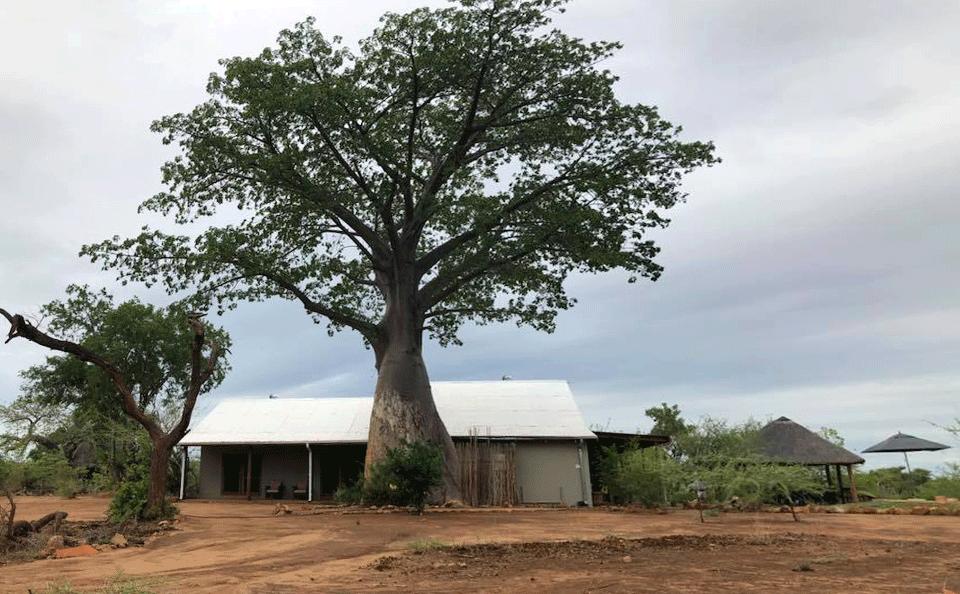 Boabab Hill Bush House