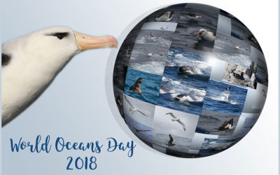 World Oceans Day 2018